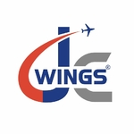 Buy JC Wings Models Online